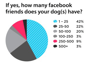 Facebook friends for dogs