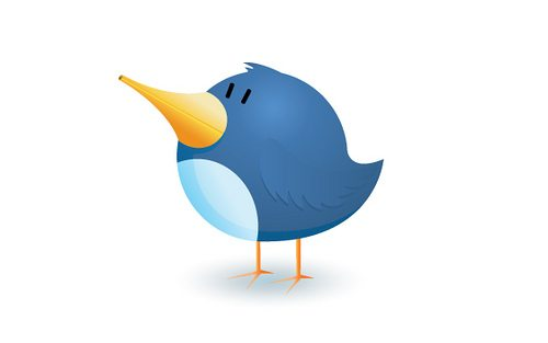 How to get Real Credibility on Twitter