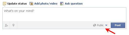 Facebook Public Option