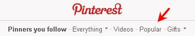 Pinterest the social media network for newcomers