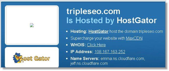 hosting company