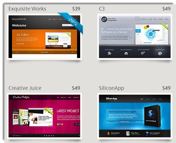 5 Top Tips for Selecting WordPress Themes and Plugins