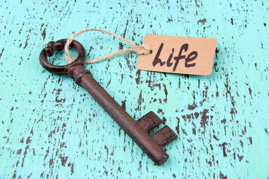 Blogger Research: Is it a Job or a Lifestyle?