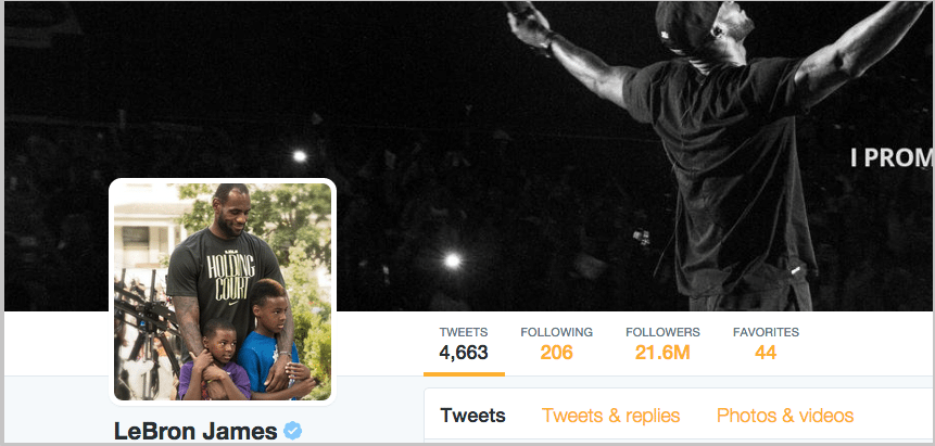 Lebron James Twitter following facts