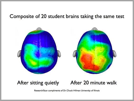 Study of two brains - marketing productivity