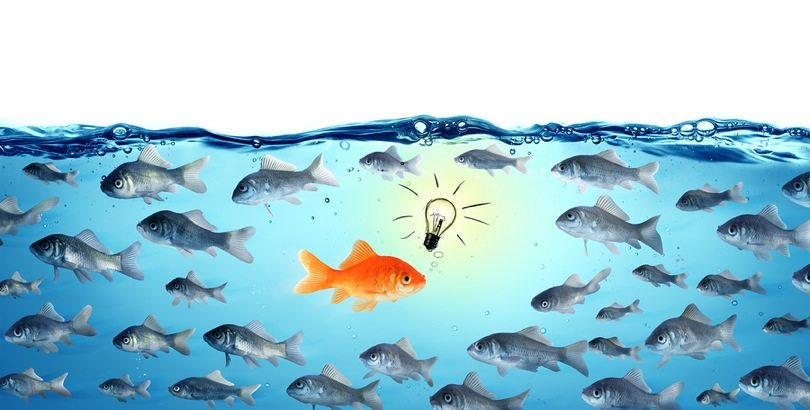 11 Blog Results That Defy Conventional Wisdom