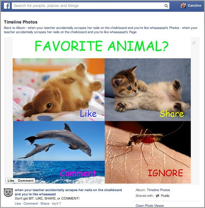 begging for shares and likes for facebook marketing mistakes