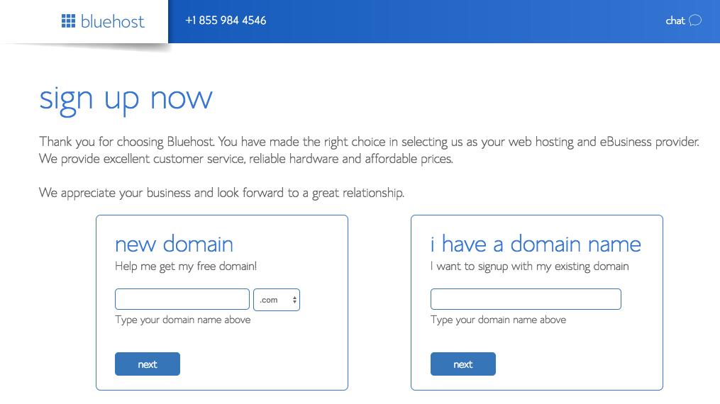 Start a Blog: Domain Name